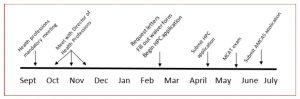 HPC timeline graphic